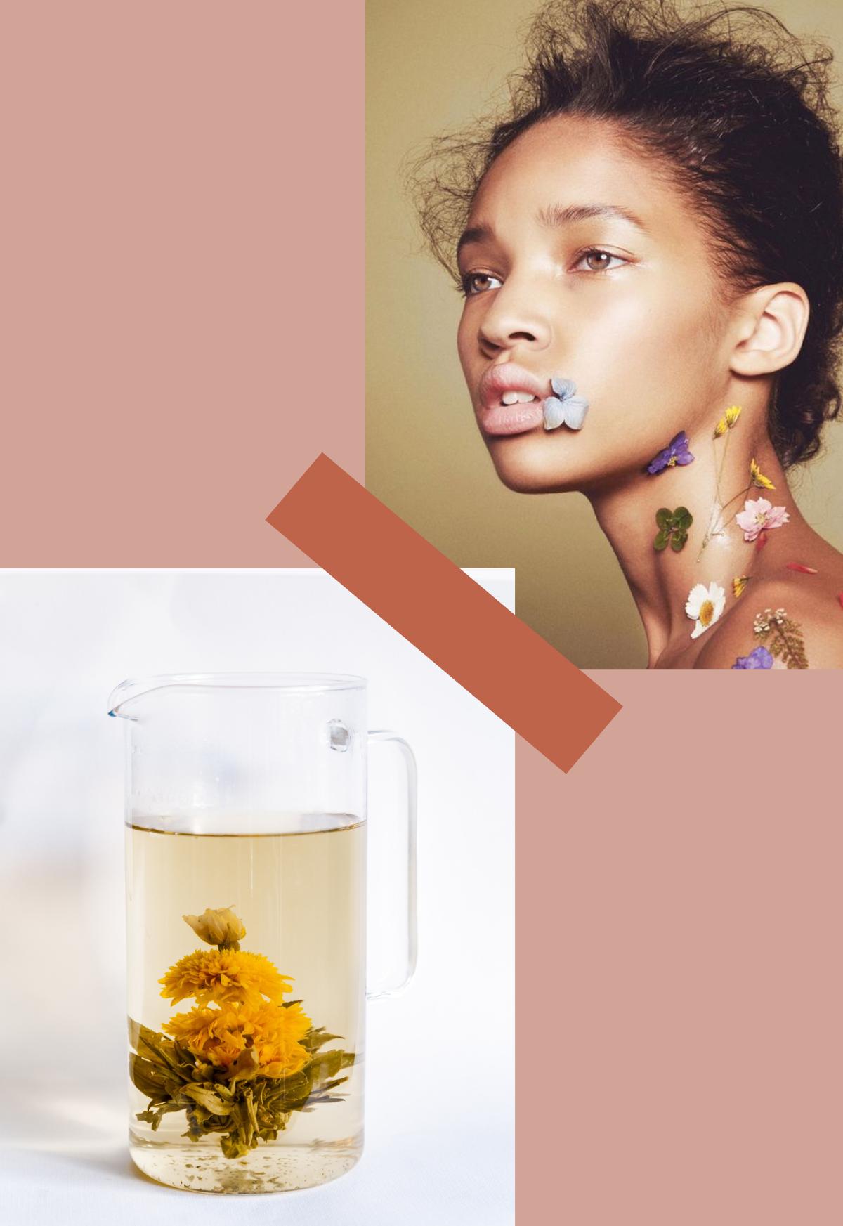 Newsletter Labr. LABR Paris première maison de fleur de thé